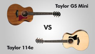 Taylor GS mini Vs Taylor 114